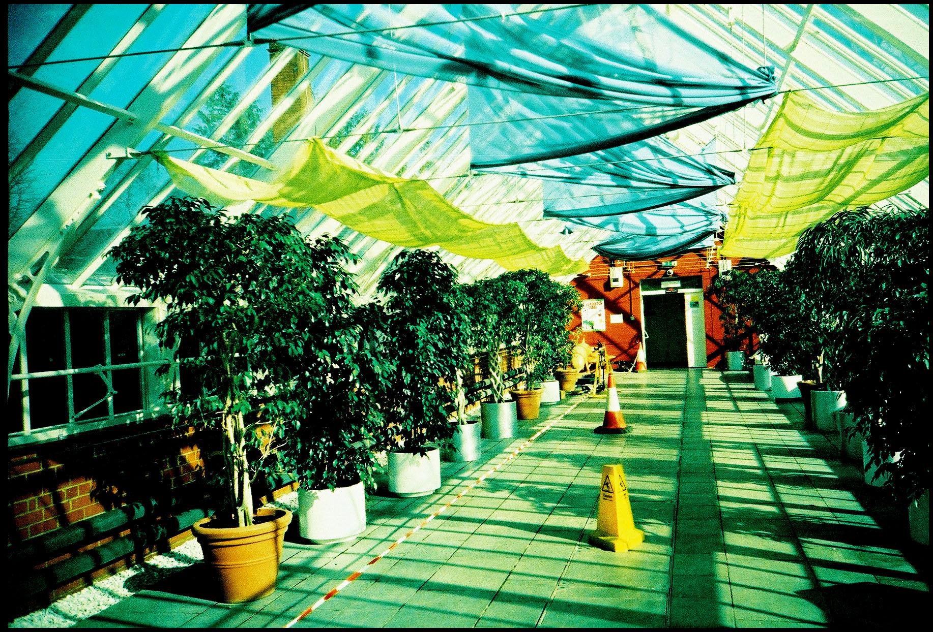 Glasgow Botanical Gardens Glasshouse Queen's Park