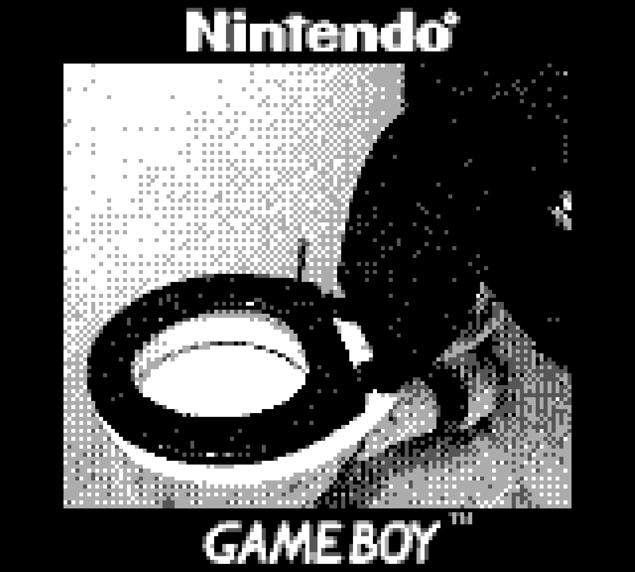 Game Boy Camera Toilet