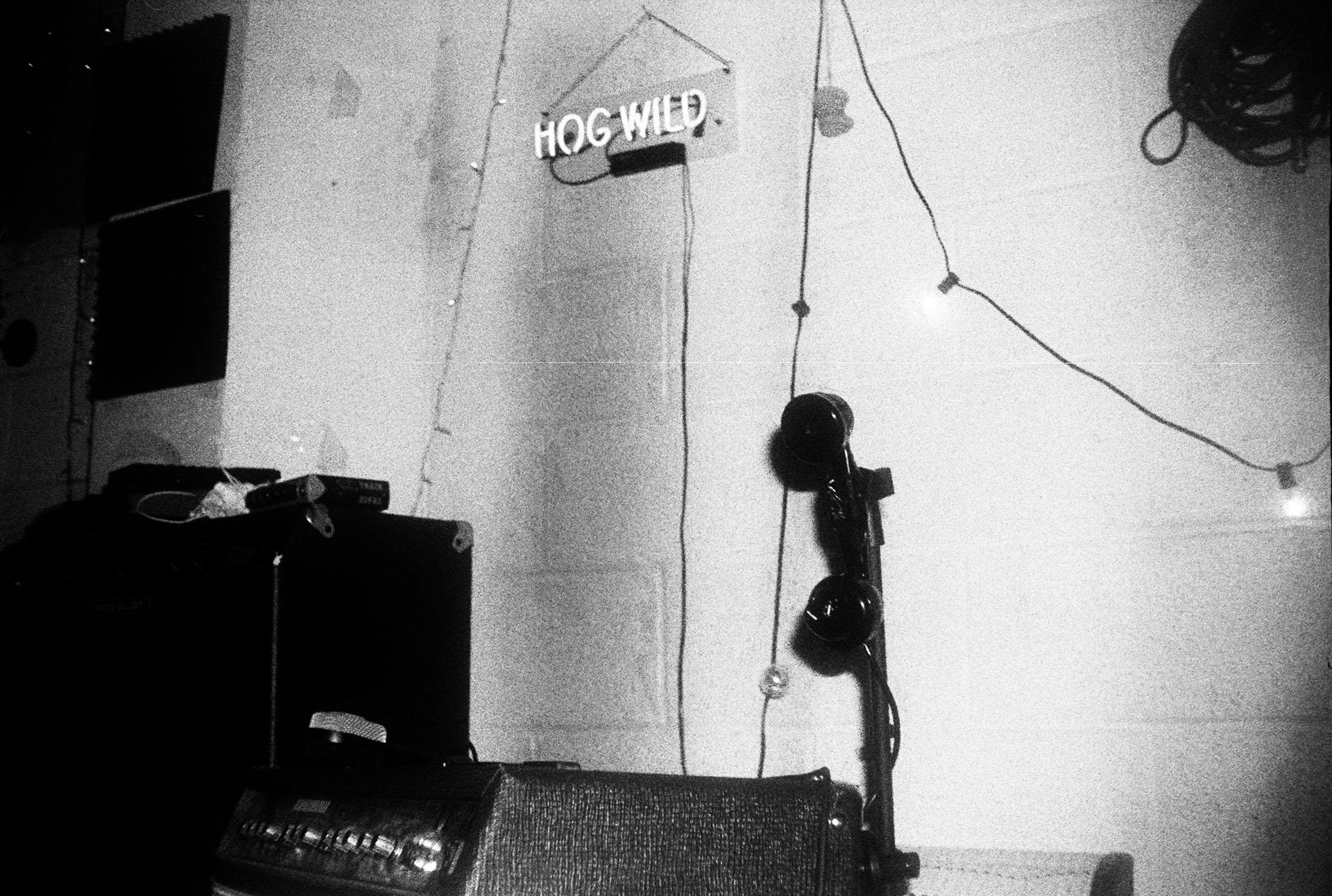 Hog Wild studio