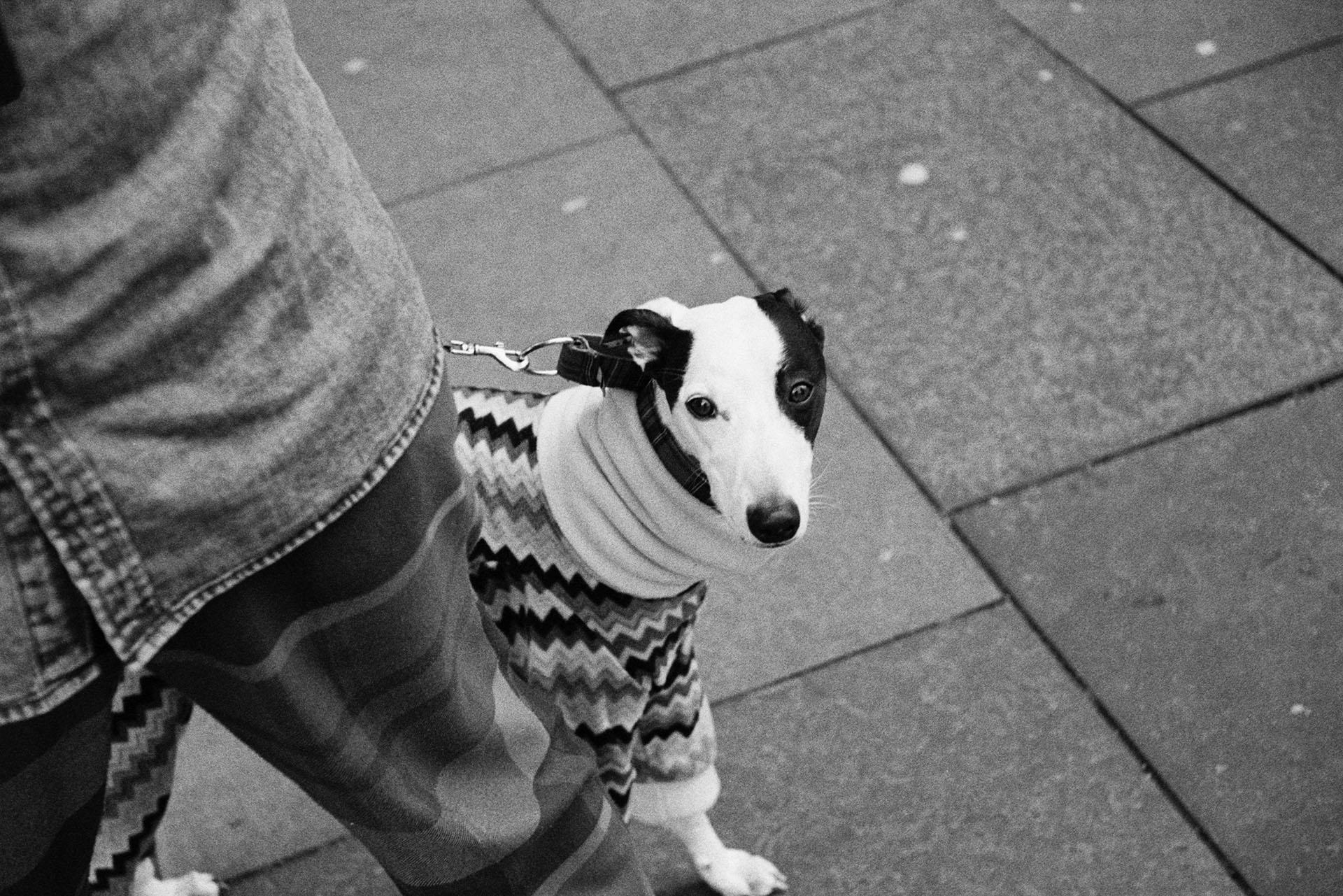 Glasgow 35mm portrait
